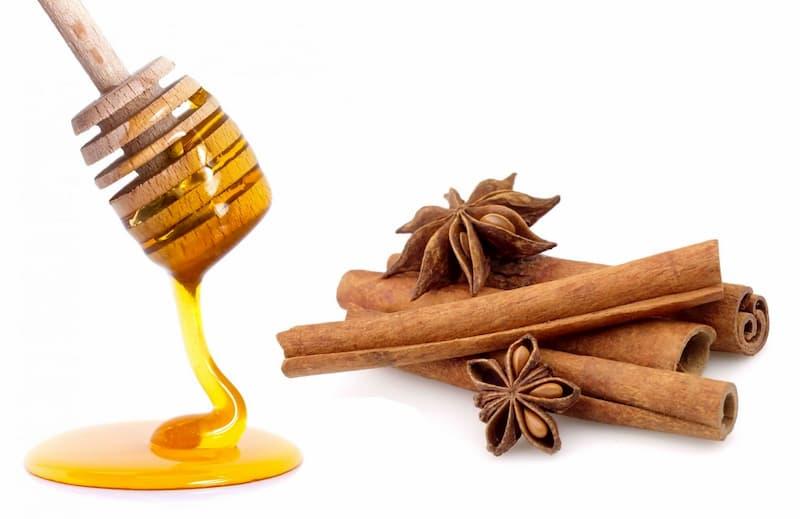 trị mụn ẩn bằng mật ong và bột quế